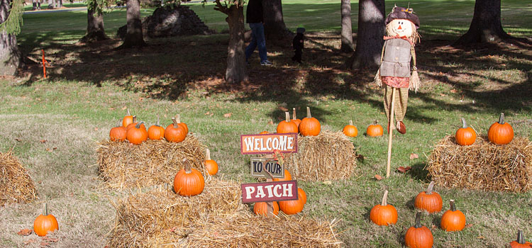 Welcome to the Everett Railroad's Pumpkin Patch!