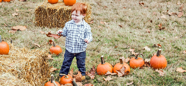 Join the fun at the Everett Railroad Pumpkin Patch